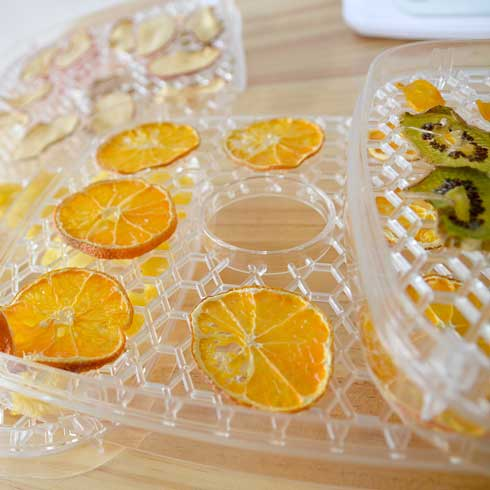 自家製ジャーキーメーカー ビーフジャーキー ドライフルーツ 食品乾燥機 サンコー