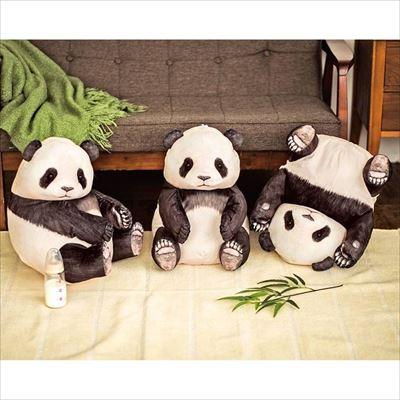 パンダのランチボックスセット