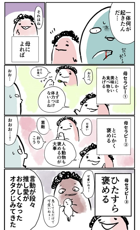 ぴよちゃん