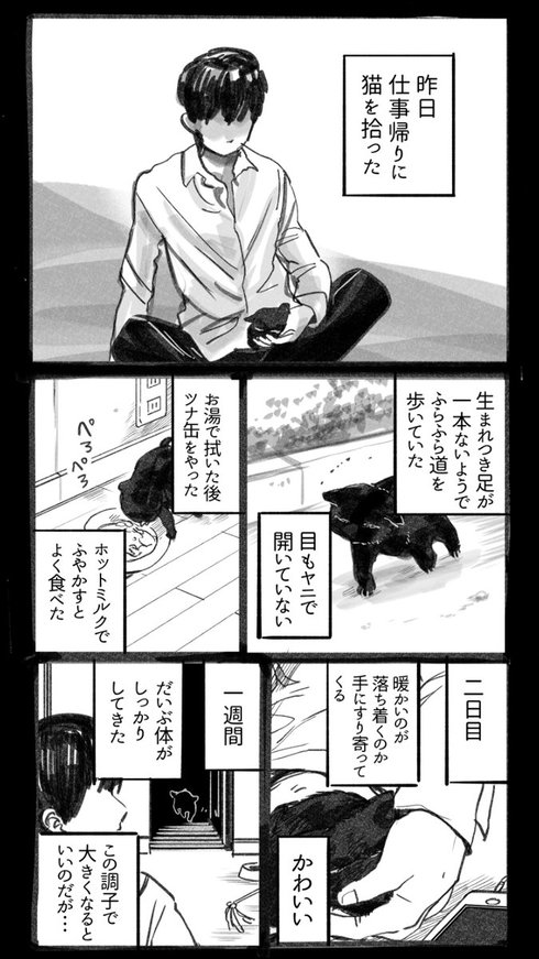 猫を拾った話01