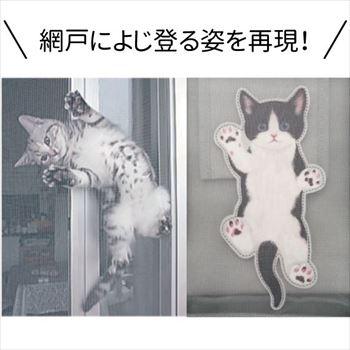 子猫のトート
