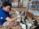 サンシャイン池崎、90匹の保護猫を救うためボランティア 「あなた…最高だよ!」「素敵すぎる」と感激の声続出