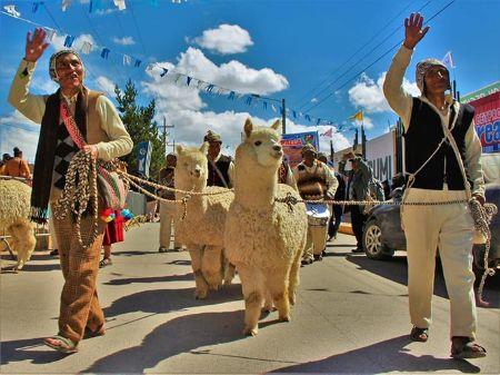 アルパカパレード