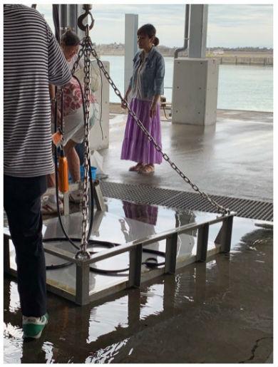 高橋真麻 アナウンサー 結婚 夫 ブログ