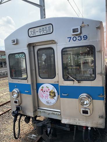 弘南鉄道桜ミクラッピング電車
