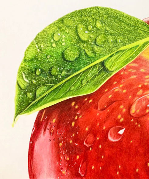 いちご 色鉛筆 画 りんご 絵 果物 リアル