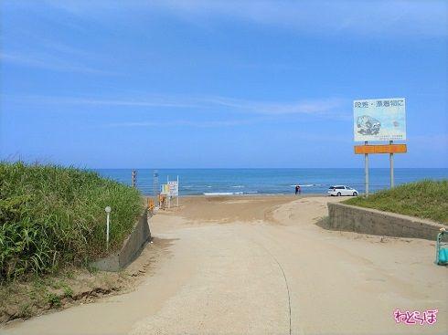 進むと砂浜へ