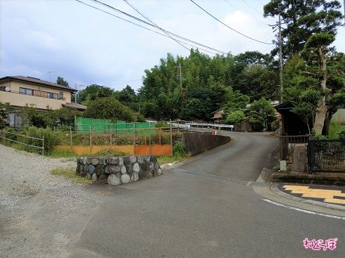 右側は舗装された見通しのいい道路です