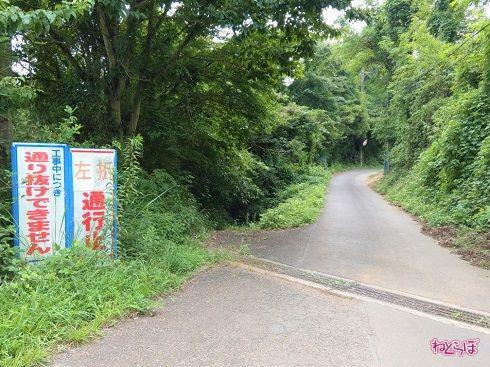 反対側の様子。左が県道なのですが、通行止めの看板がなくても問題がなさそうな気が……