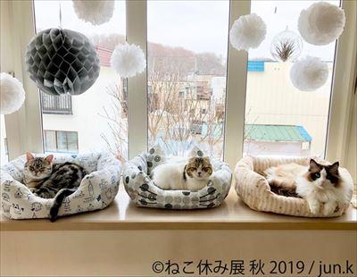 「ねこ休み展」名古屋