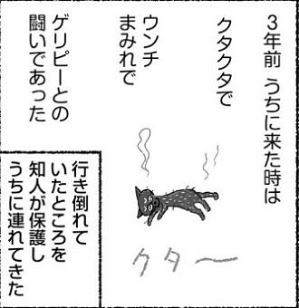 simico『サビちゃん ゲリ戦記』