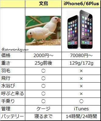iPhone 文鳥 比較表 理由なき激怒 さかむけ 鳥プル 尻 寝るまで ネタ シリーズ 風物詩