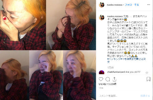 野沢直子 総合格闘技 アメリカ 真珠 家族