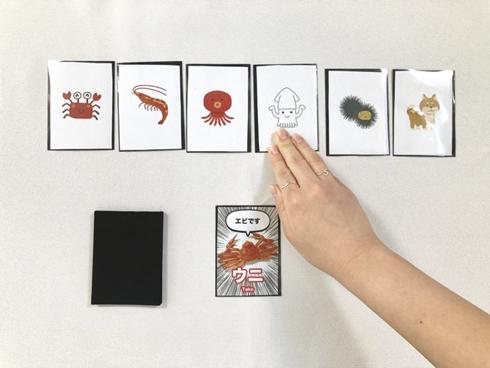 矛盾 バズ バグ ゲーム カード