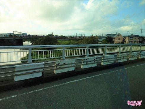 大磯町に入り、花水橋を渡ります。貨物列車が向こうに見えました