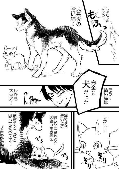 捨て猫 拾ったら 予想の斜め上の結果 成長 大型 犬 漫画 イケメン me