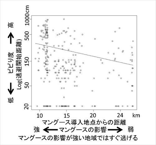 東京農工大 マングースとカエルの関係