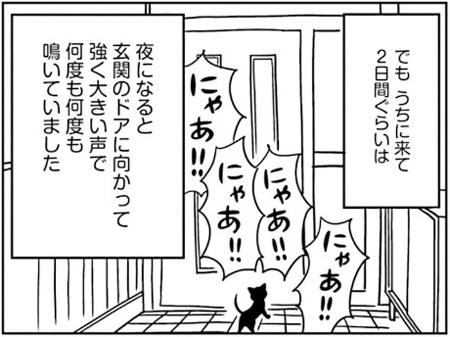 「窓際のクロ」宇仁田ゆみ