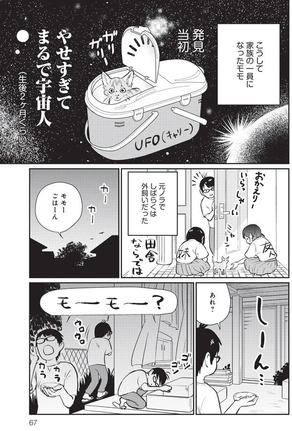 三本一舞『モモが行方不明』3
