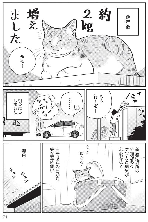 三本一舞『モモが行方不明』7