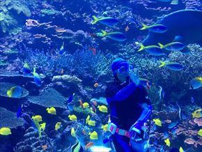 トリップアドバイザー 動物園・水族館ランキング