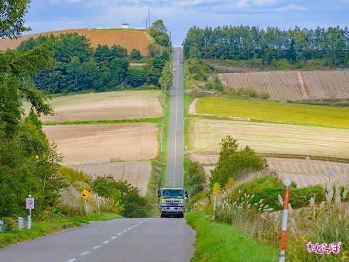 トラクターやトラックなどの車両もよく通ります。スピードの出しすぎには注意