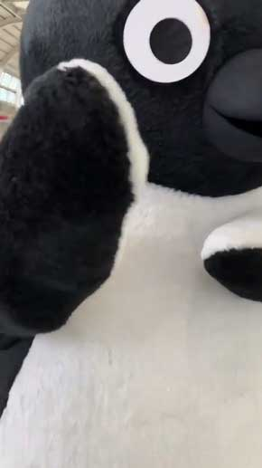 Suica ペンギン 着ぐるみ 動き サービス キレッキレ かわいい