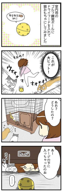我が家の猫にヒット☆おもちゃで無限ループ1