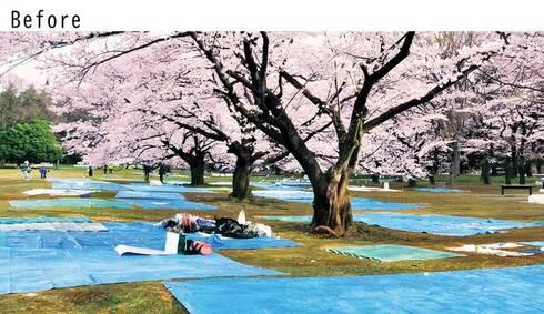 日本の風景を変える 畳シート02