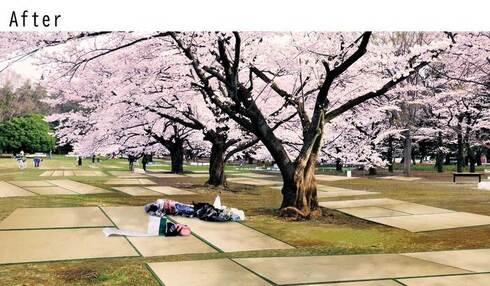 日本の風景を変える 畳シート03