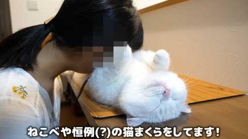 至高 猫まくら 洗いたて ふわっふわ ポムさん しまちゃん YouTube 寝顔 カリン様