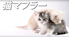 CV部 竹達彩奈 アテレコ 擬人格化 クラウン 猫 うさぎ 動画 インタビュー