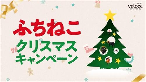 シャノアール ふちねこクリスマスキャンペーン