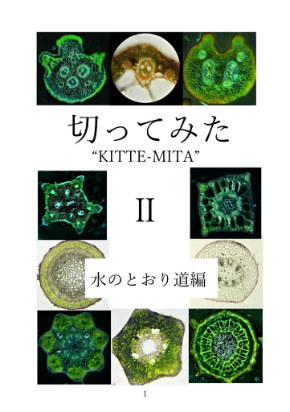 同人誌 図書館 司書 植物 顕微鏡