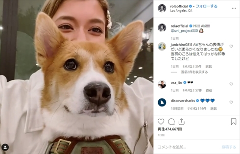 ローラ 保護犬 あき UNI project インスタ