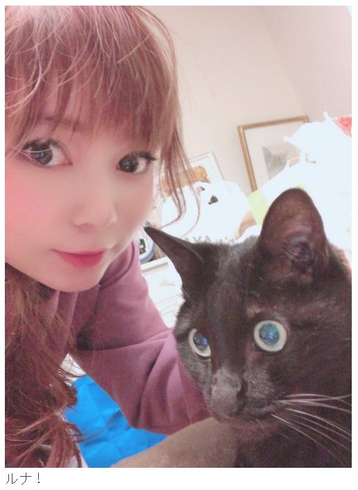 中川家の先輩黒猫・ルナ。子猫はルナの弟分になるのかな?(画像は中川翔子オフィシャルブログから)