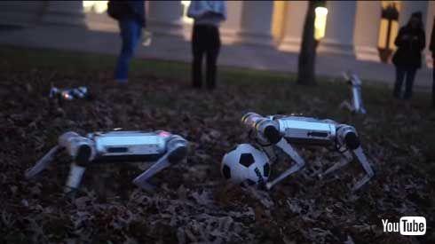 MIT マサチューセッツ工科大学 四つ足 ロボット Mini Cheetah 9体 テスト動画
