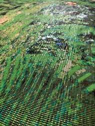 聖剣伝説2 パッケージ イラスト ビーズ 織り 再現 制作 家族 マナの樹