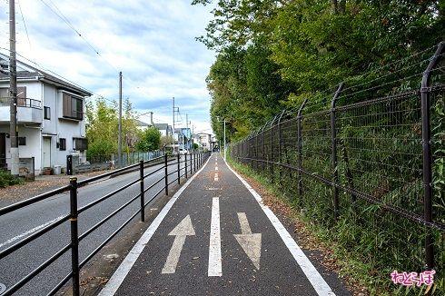 自転車通行帯が車道と分離されているので自転車の人も走りやすそう