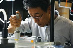 近畿大学水産研究所ウナギ