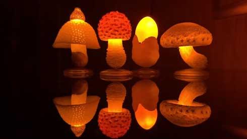 LEDきのこライトコレクション 光る キノコ カプセルトイ いきもん