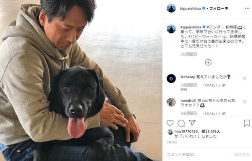 椎名桔平 テンダー 盲導犬 パピーウォーカー PW