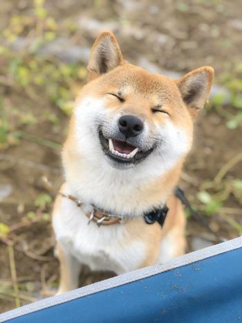 笑顔のそらくんアップ2