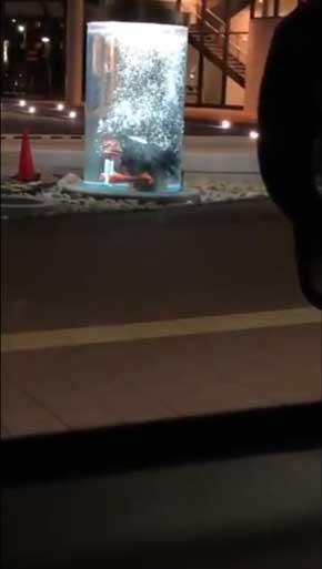 兵庫県 福崎町 夜 駅 不穏 河童 カッパ 出てくる 怖い 水中 ガジロウ