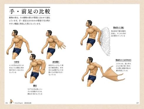 satoshikawasaki 進化論