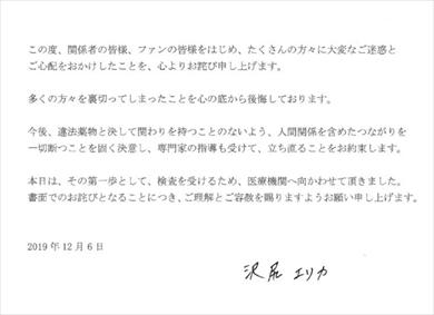 沢尻エリカ 起訴 麻薬取締法違反 合成麻薬 MDMA LSD 逮捕 謝罪文