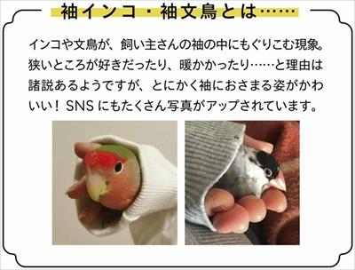フェリシモ 小鳥ポーチ