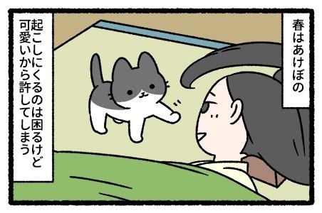 枕草子な猫