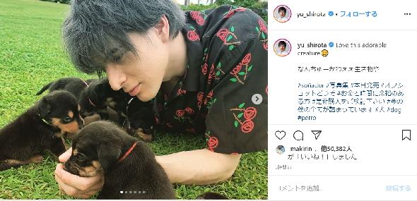 城田優 子犬 Instagram 写真集