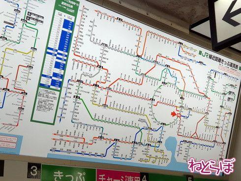 東京近郊区間大回り